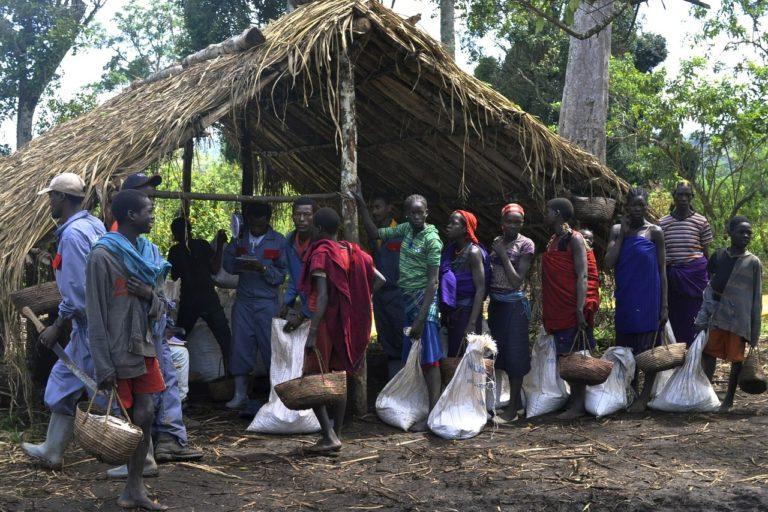 Cardano blockchain deployed in Ethiopia's agritech industry